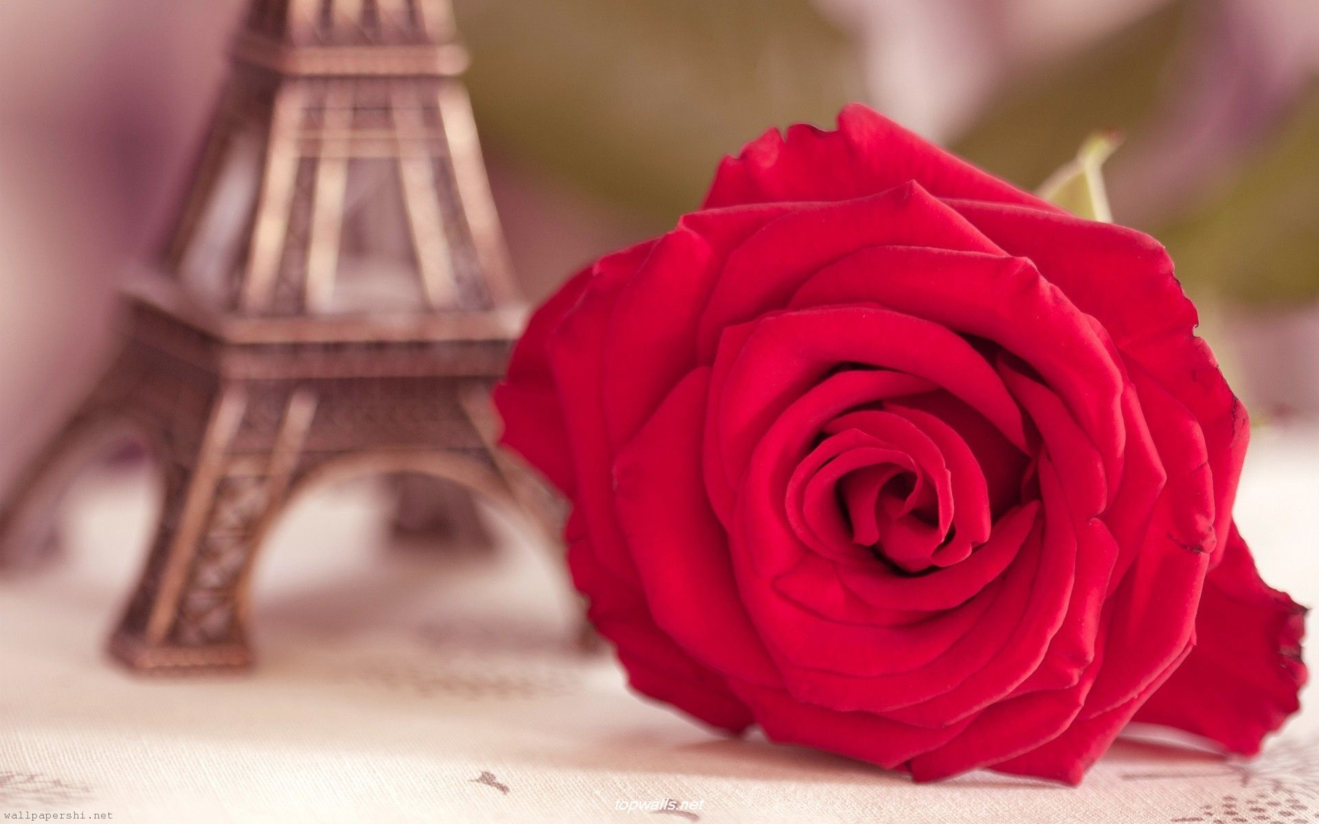 Flower-Rose-Eiffel-Tower-Statuette-Blurring